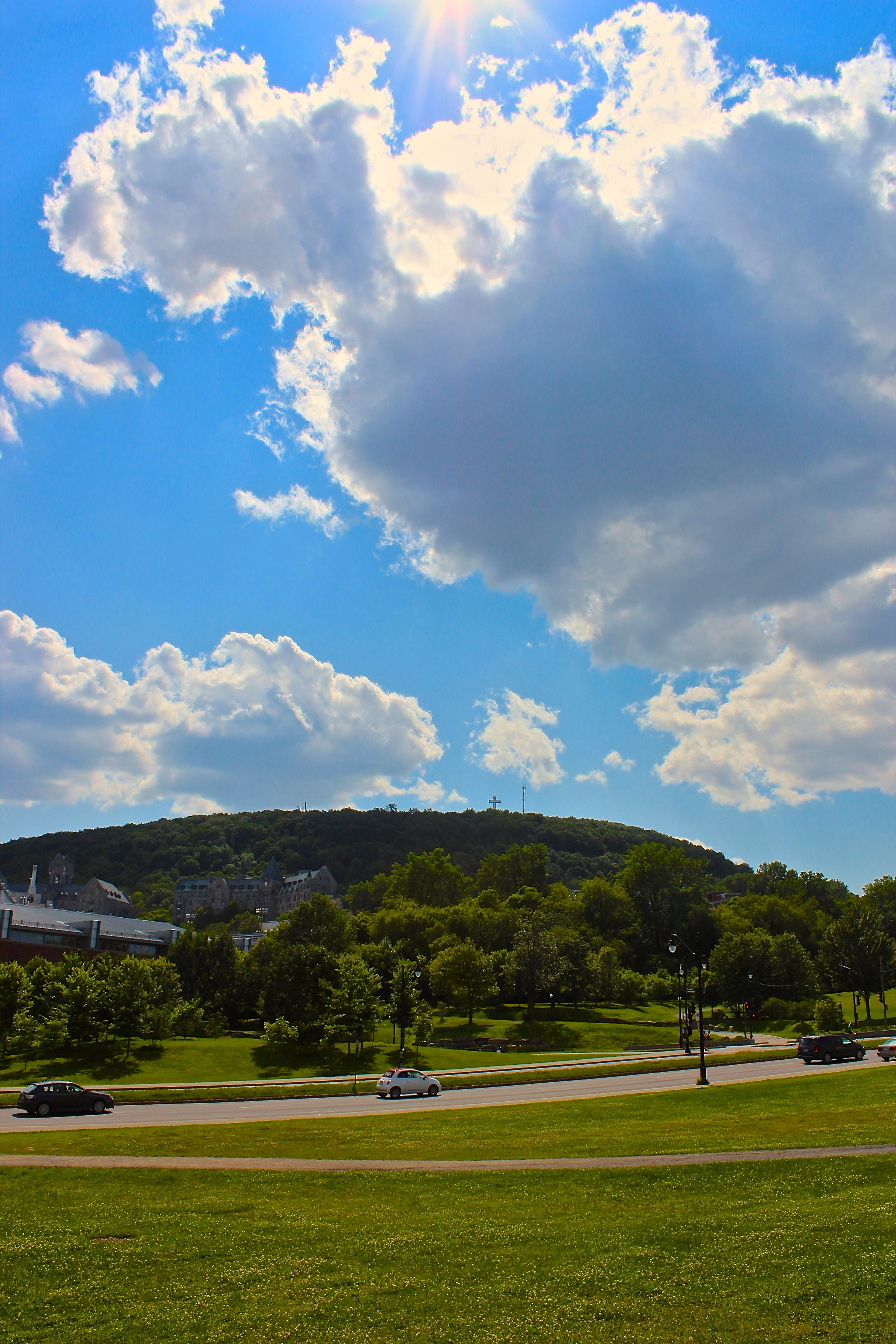 Mount Royal from Parc & Pine